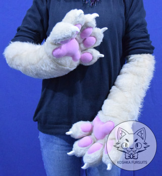 Hand Paws Image