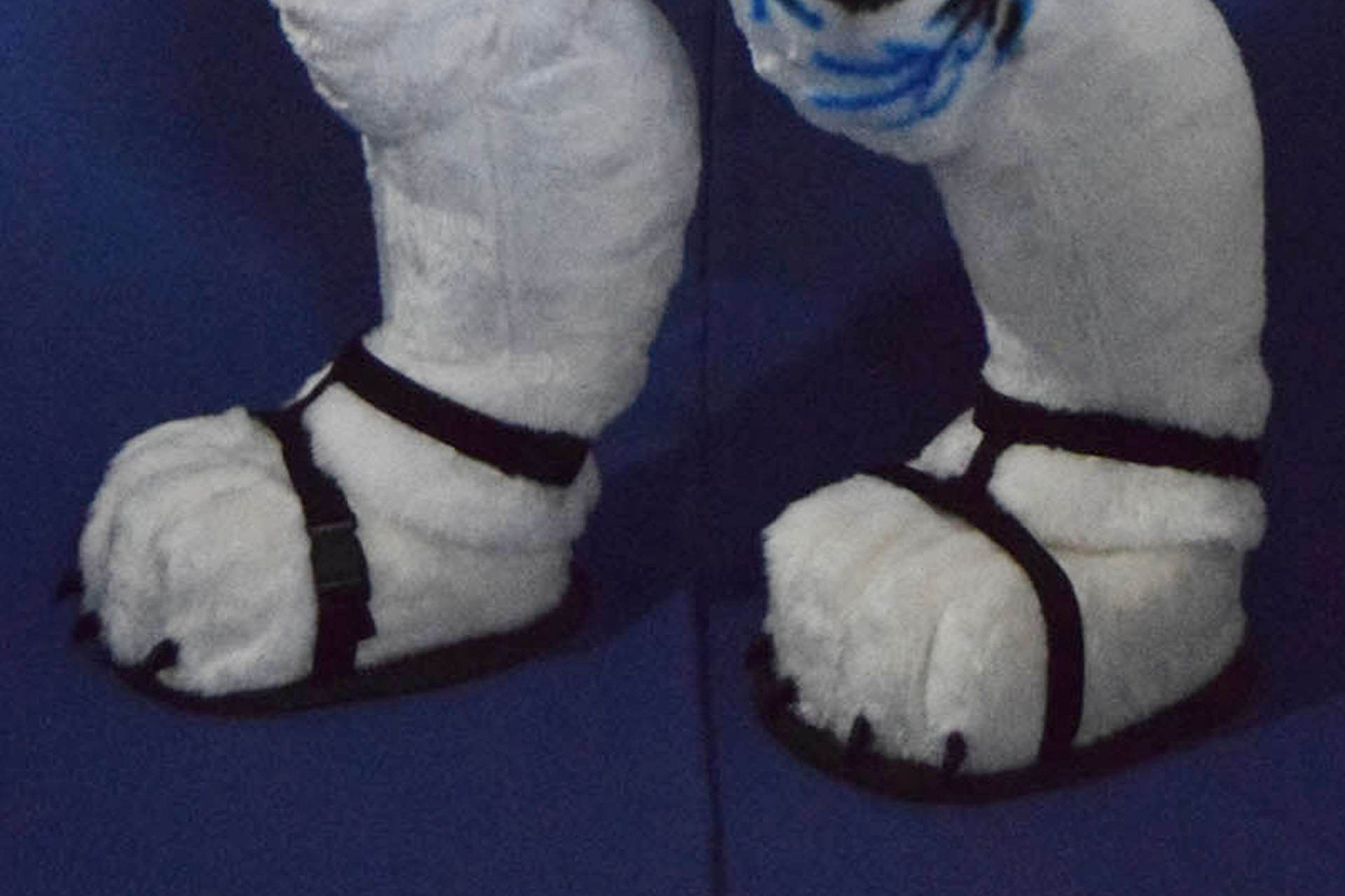 Fursuit Sandals